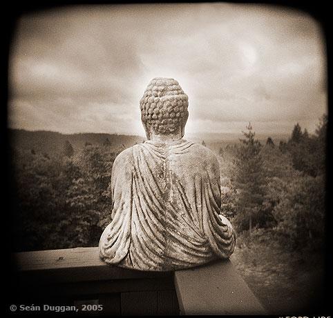Il Buddha sulla strada thumbnail