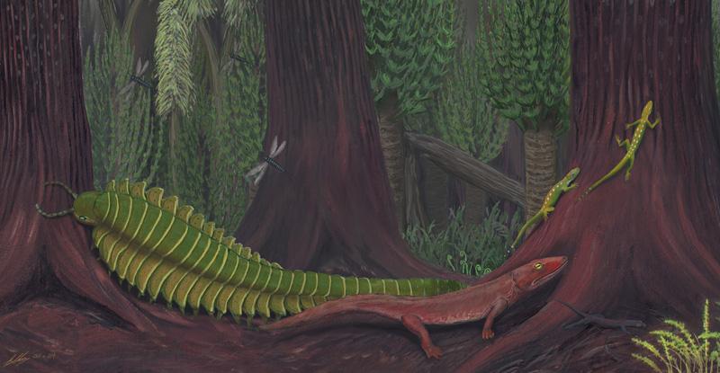 Il Nerd nel Carbonifero Inferiore thumbnail
