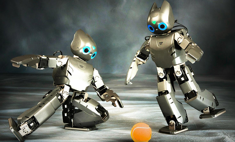 Robot: nati per soffrire o meritevoli di rispetto? thumbnail