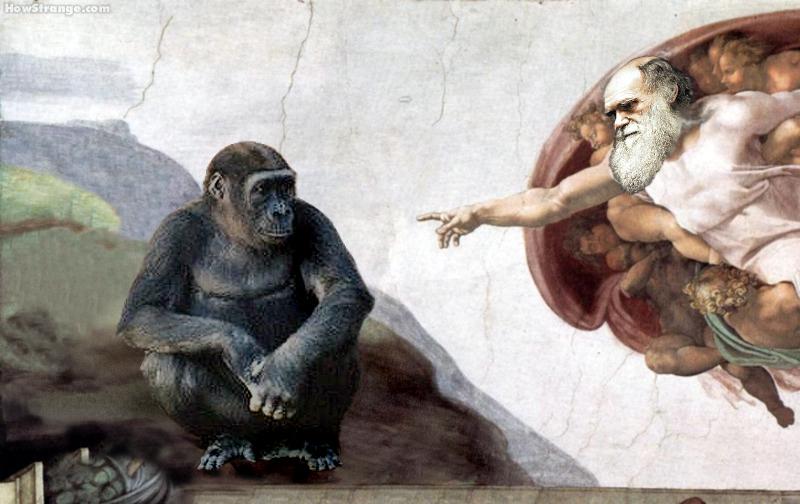 Darwin Day: di scienza, evoluzione e sano scetticismo thumbnail