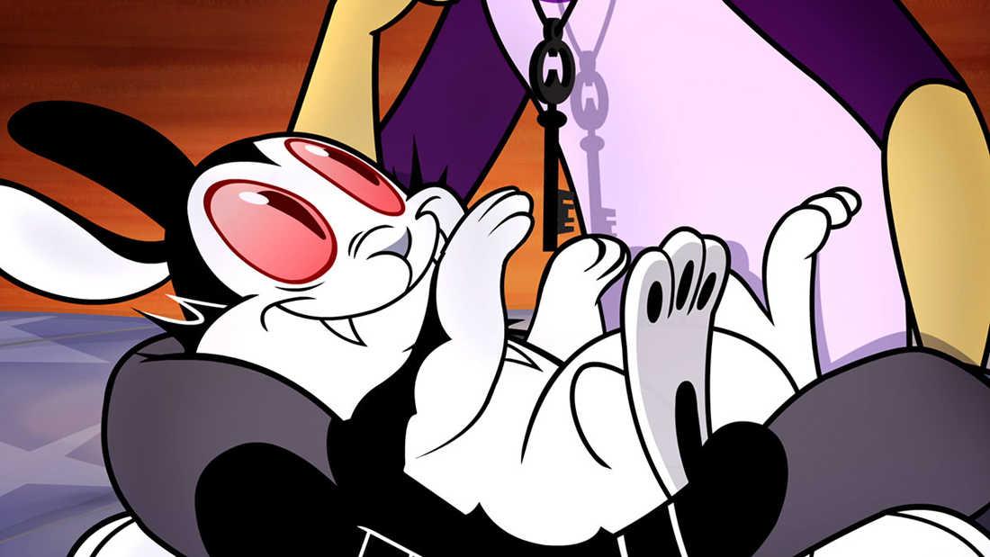 Bunnicula: le storie del coniglio vampiro thumbnail