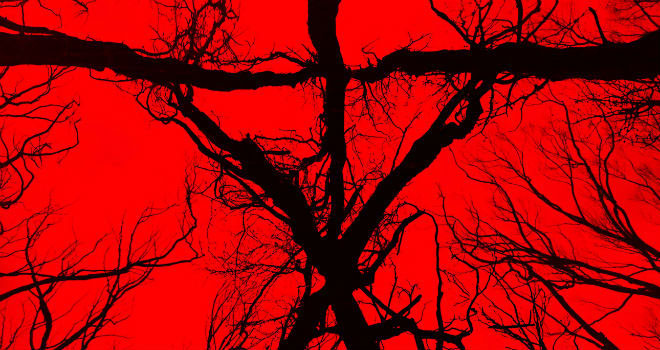Blair Witch: ritorno a Black Hills thumbnail