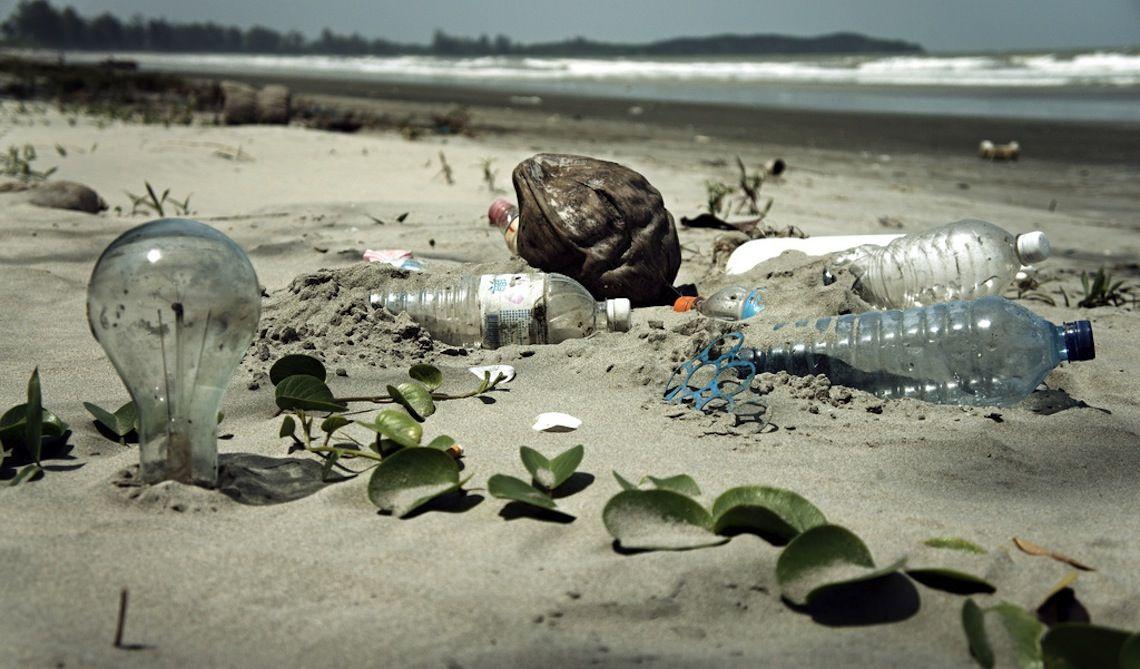 Il verme mangia plastica, la soluzione ai nostri problemi? thumbnail