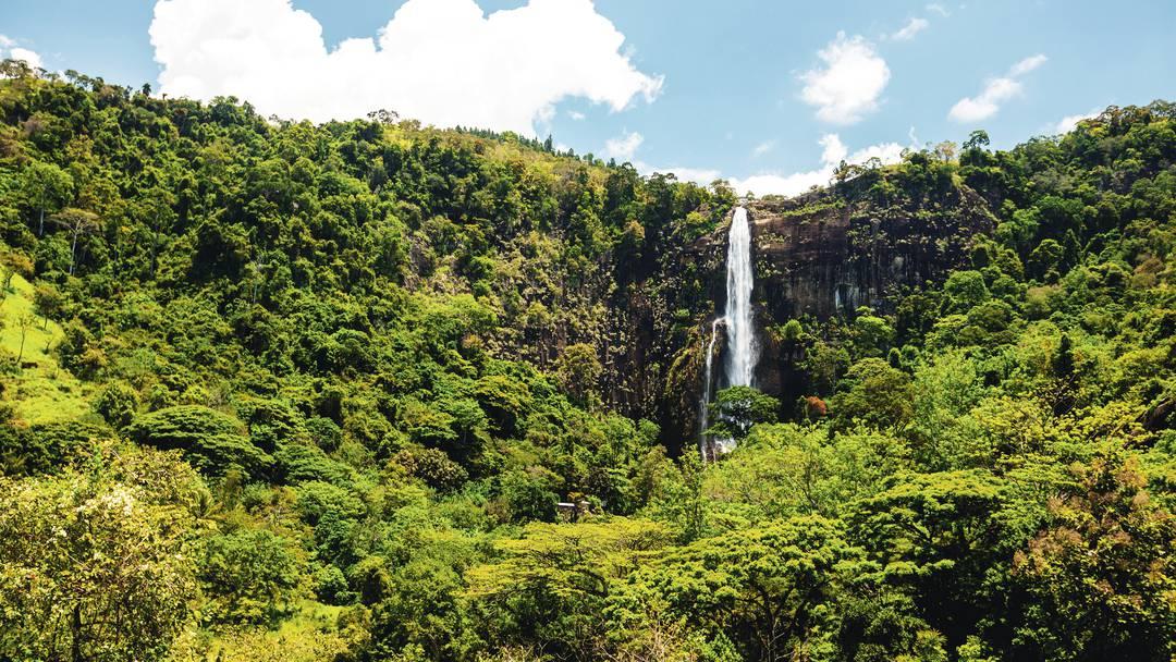Partiamo per lo Sri Lanka - Speciale Scienza 1 di 3 thumbnail