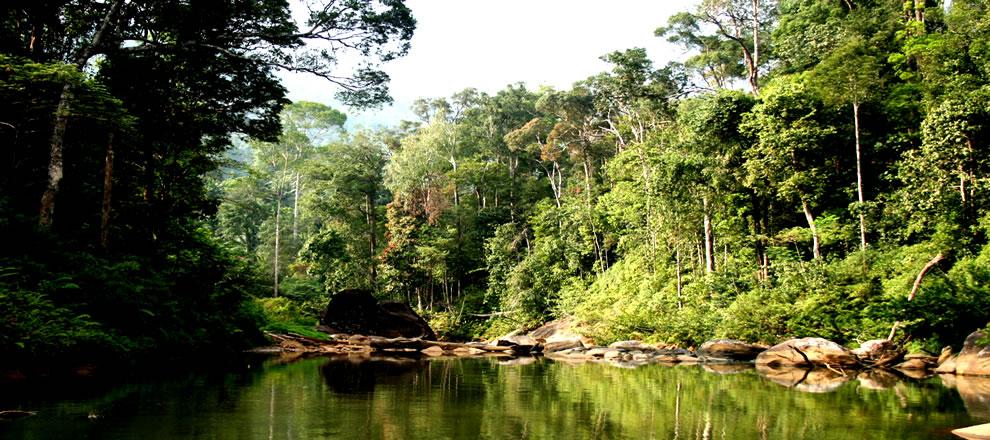 Partiamo per lo Sri Lanka - Speciale Scienza 2 di 3 thumbnail
