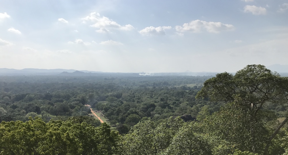 Torniamo dallo Sri Lanka! thumbnail