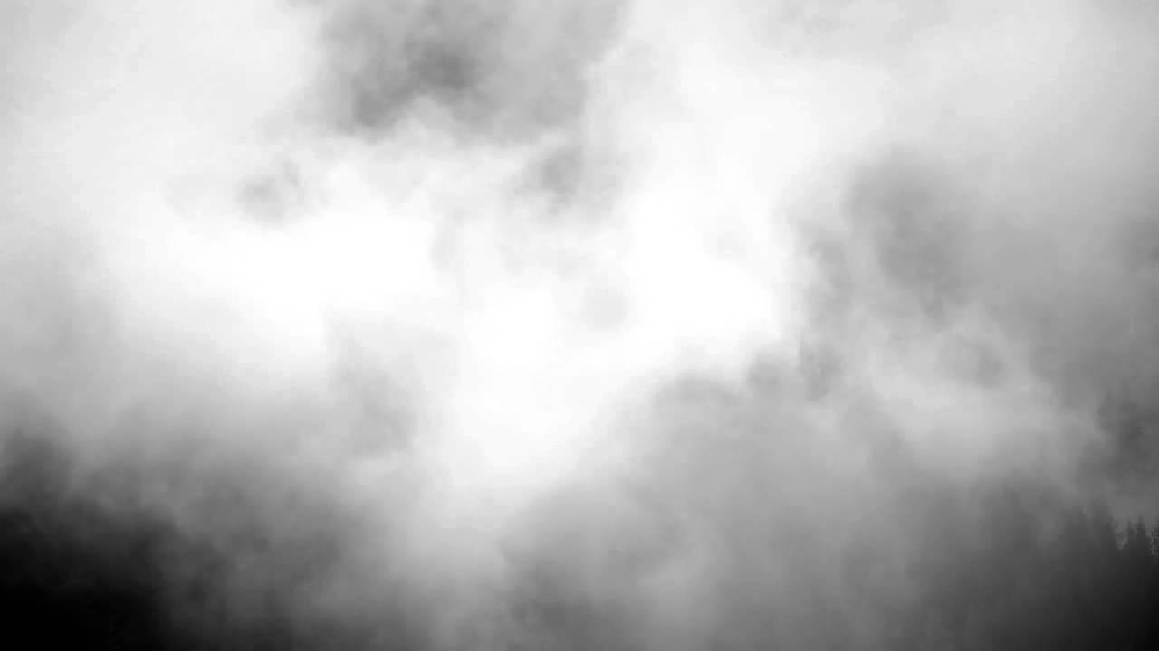 The mist: dentro la tragedia sociale di Stephen King thumbnail