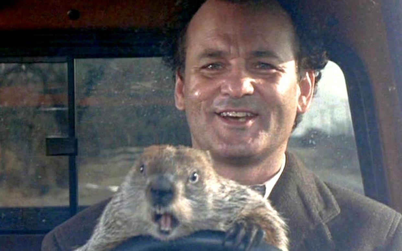 Il Giorno della Marmotta: campeggiatori, camperisti e campanari thumbnail