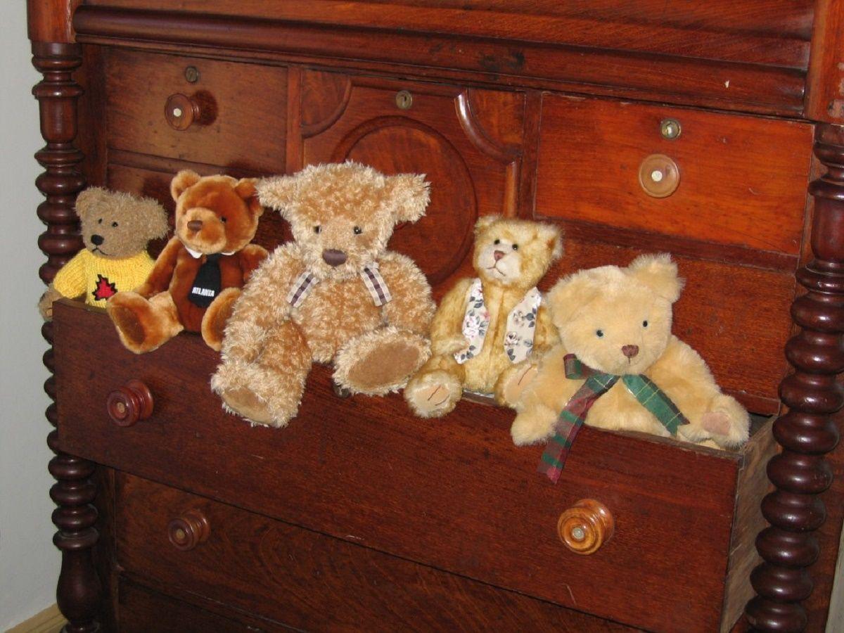 La leggenda di Teddy Bear, quando tutto ebbe inizio thumbnail