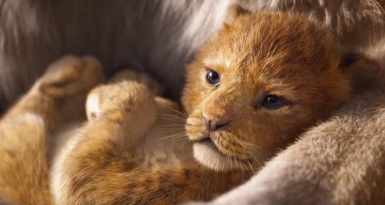 Il Re Leone: ecco il trailer ufficiale italiano thumbnail