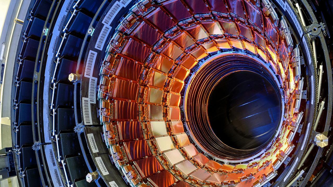 CMS osserva un evento 50 volte più raro del bosone di Higgs: tZq thumbnail