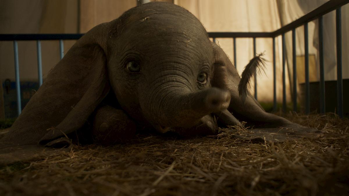 Dumbo: universi alternativi | Recensione thumbnail