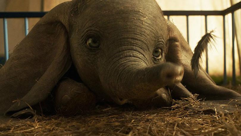 """Dumbo: la versione di """"Baby Mine"""" degli Arcade Fire accompagna il nuovo video! thumbnail"""