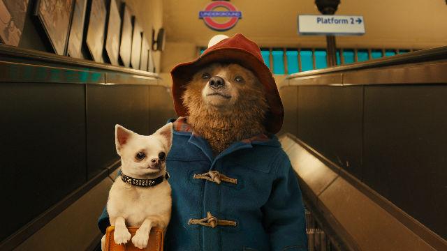 Top 10: gli orsi più iconici del cinema thumbnail