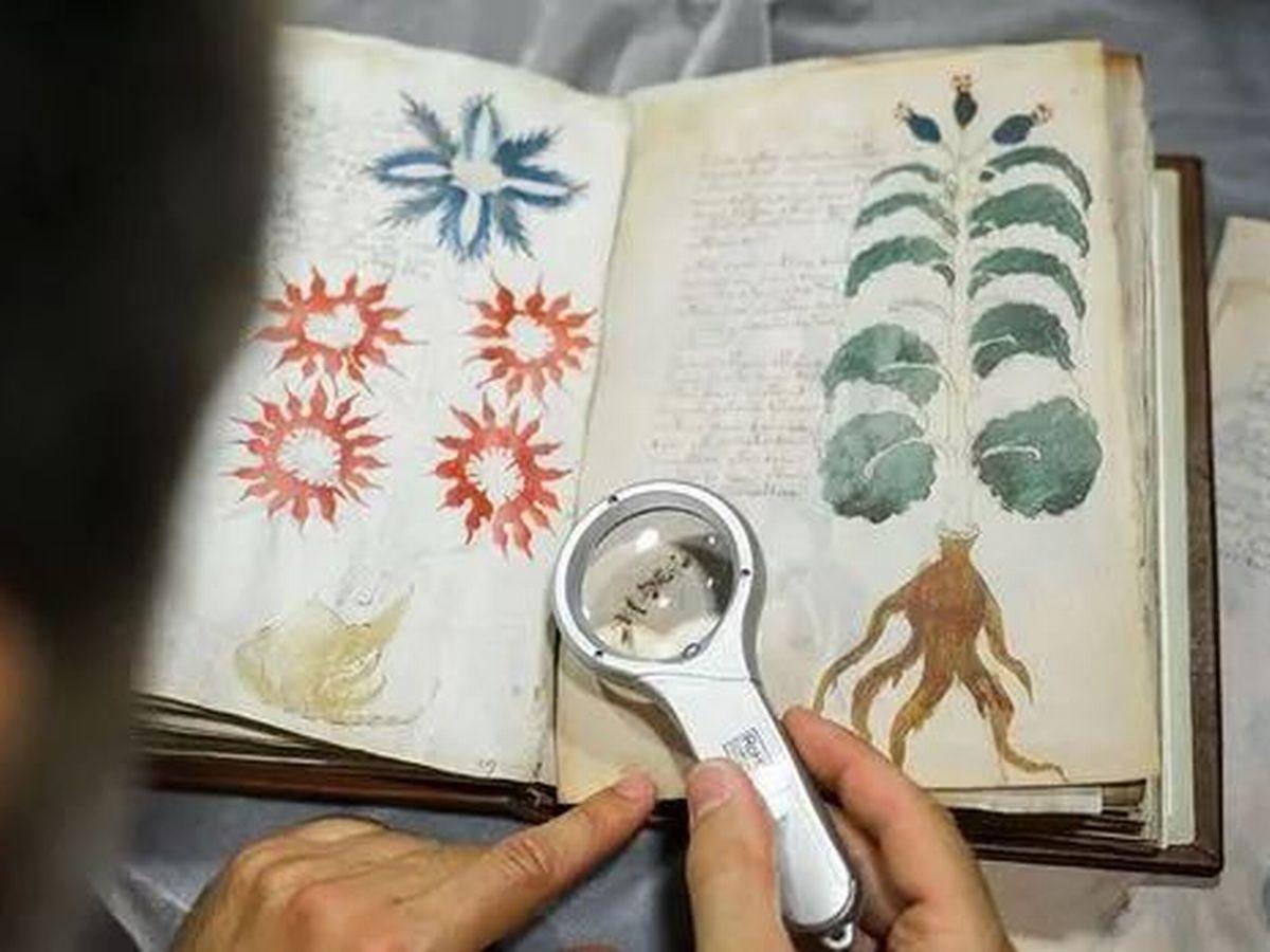 Forse hanno decifrato il Manoscritto Voynich... o forse no thumbnail