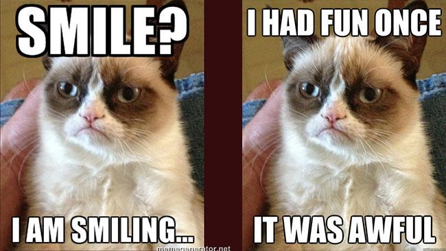 È morta Grumpy Cat thumbnail