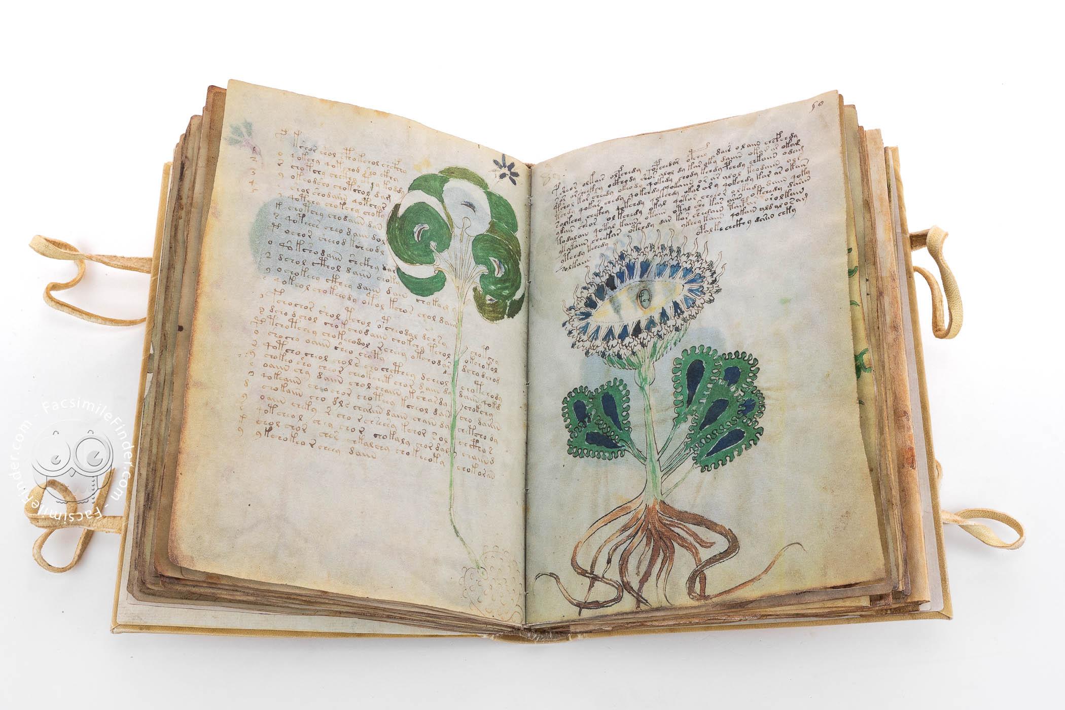 Manoscritto Voynich