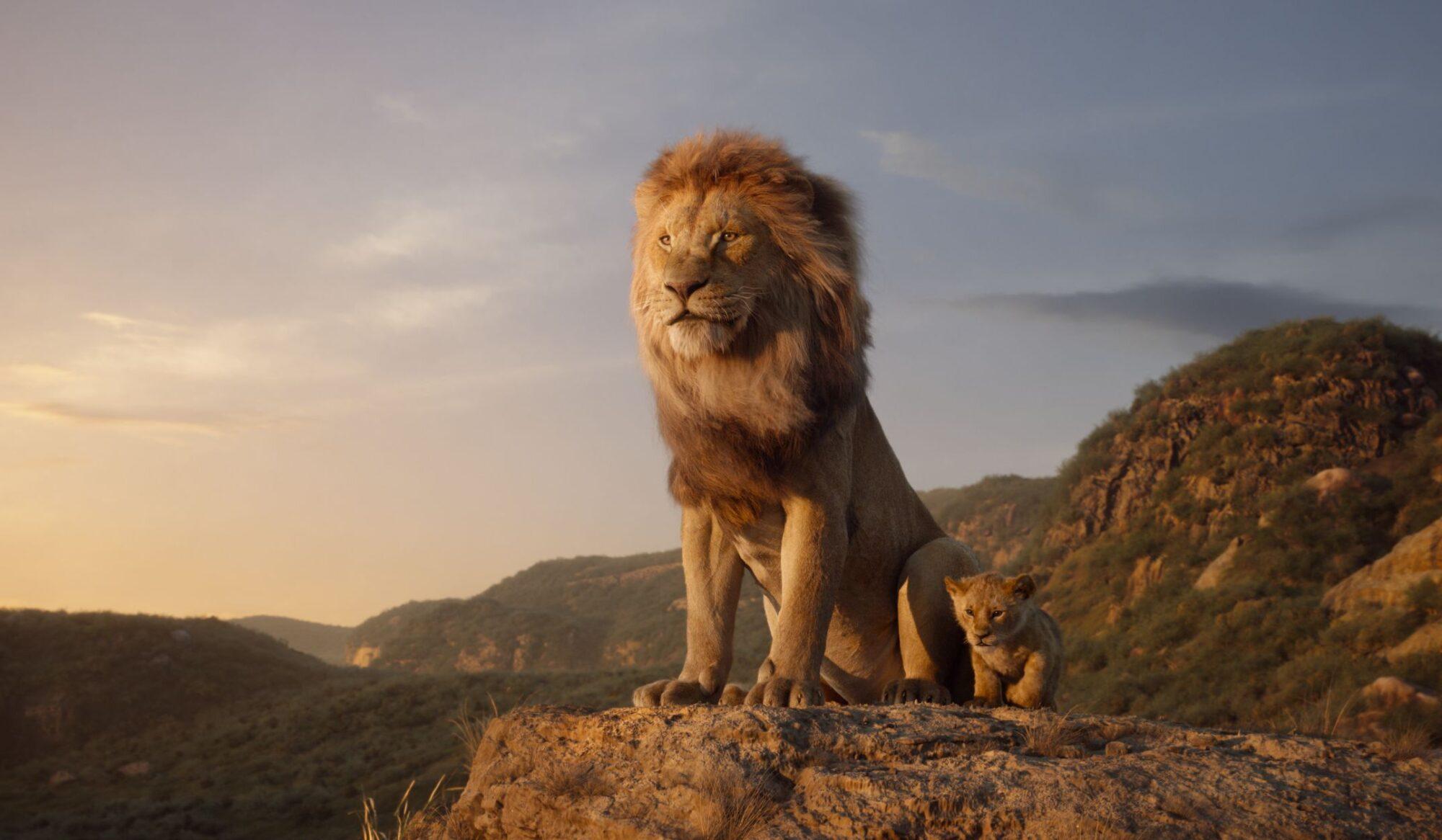 Il Re Leone: in arrivo un sequel diretto dal regista di Moonlight thumbnail