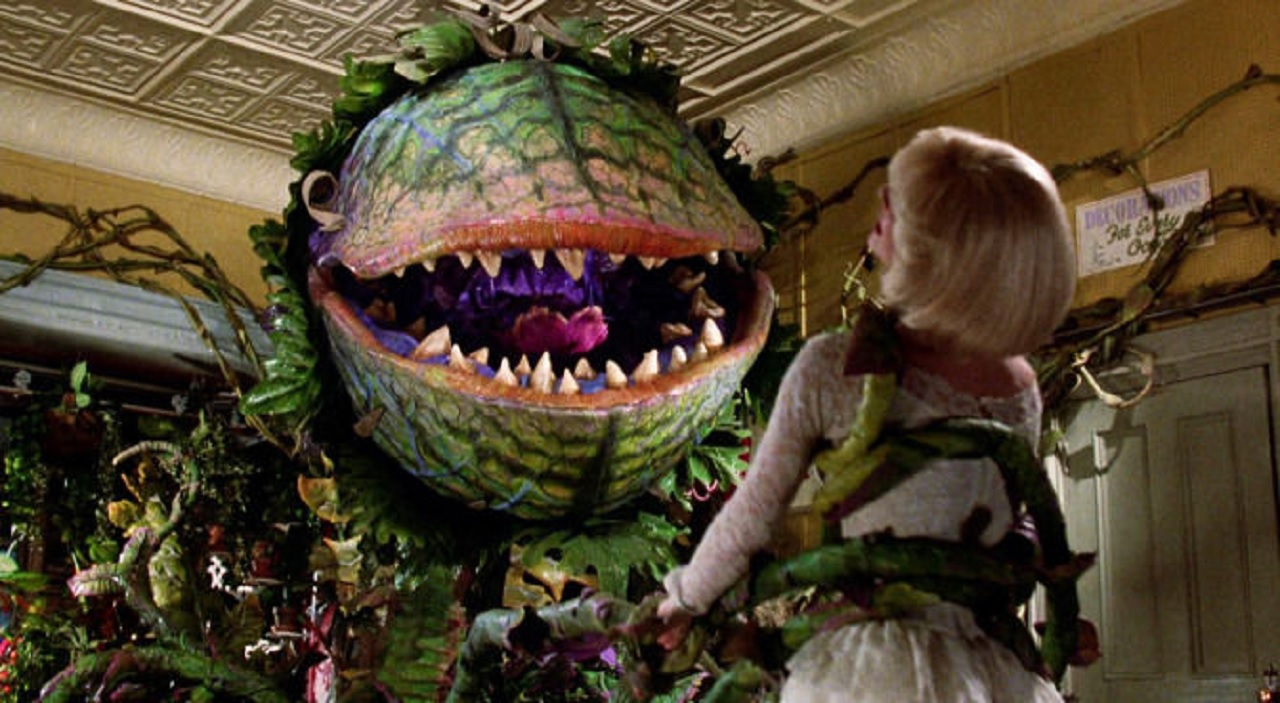 Piccola Bottega degli orrori: Taron Egerton e Scarlett Johansson nel remake? thumbnail