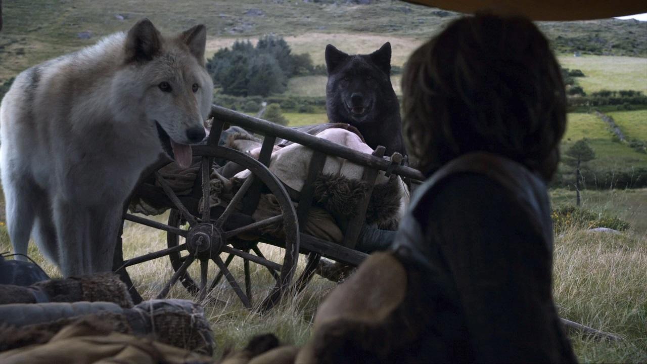 Game of Thrones: muore uno dei metalupi thumbnail