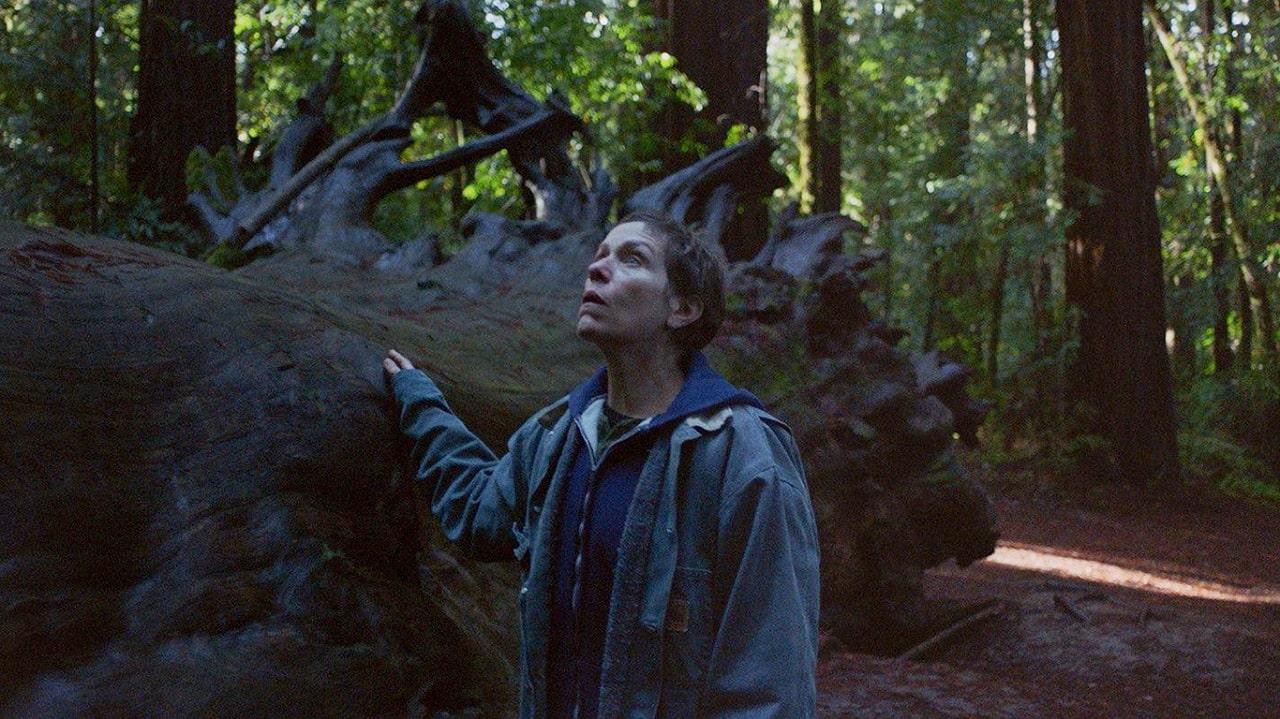 Nomadland: il film candidato all'Oscar arriva su Disney+ thumbnail