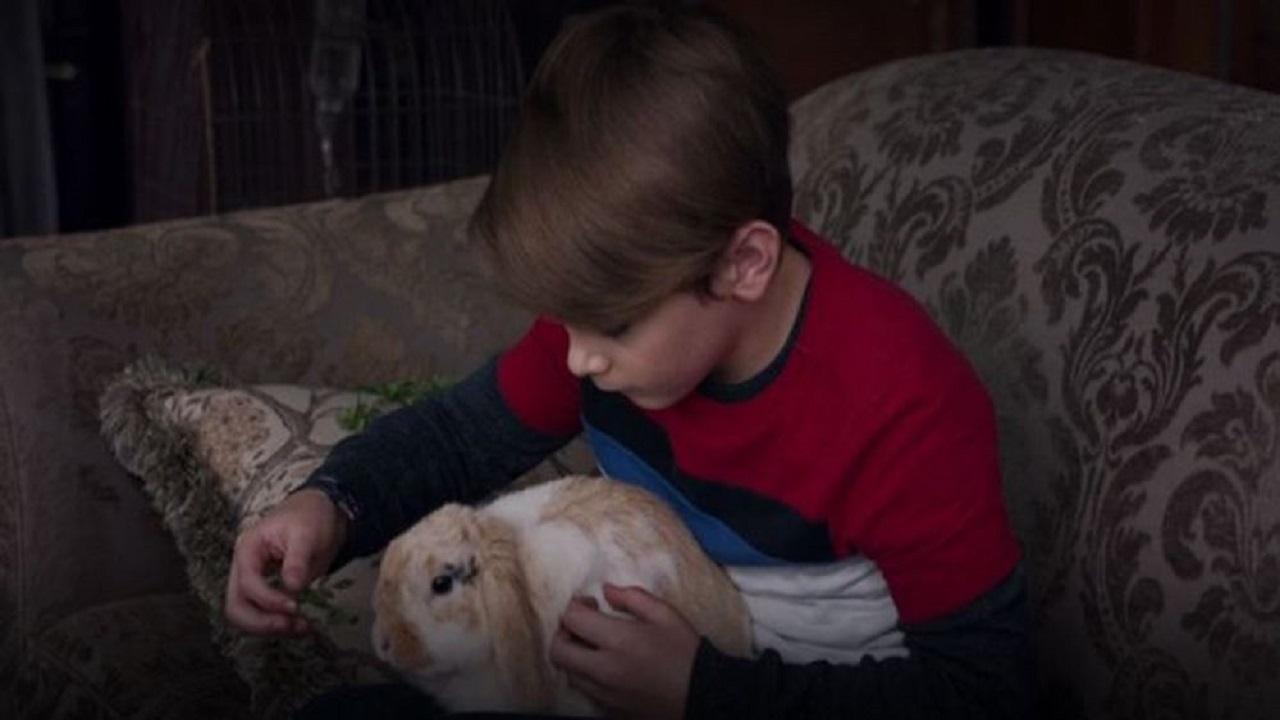 WandaVision: tagliata una scena demoniaca con il coniglio Scratchy thumbnail