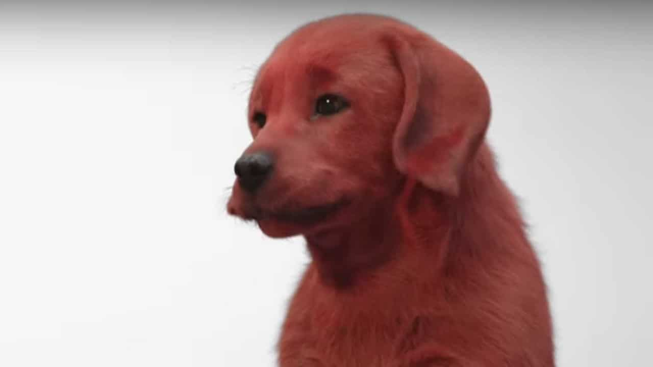 Clifford the Big Red Dog: primo trailer del film thumbnail
