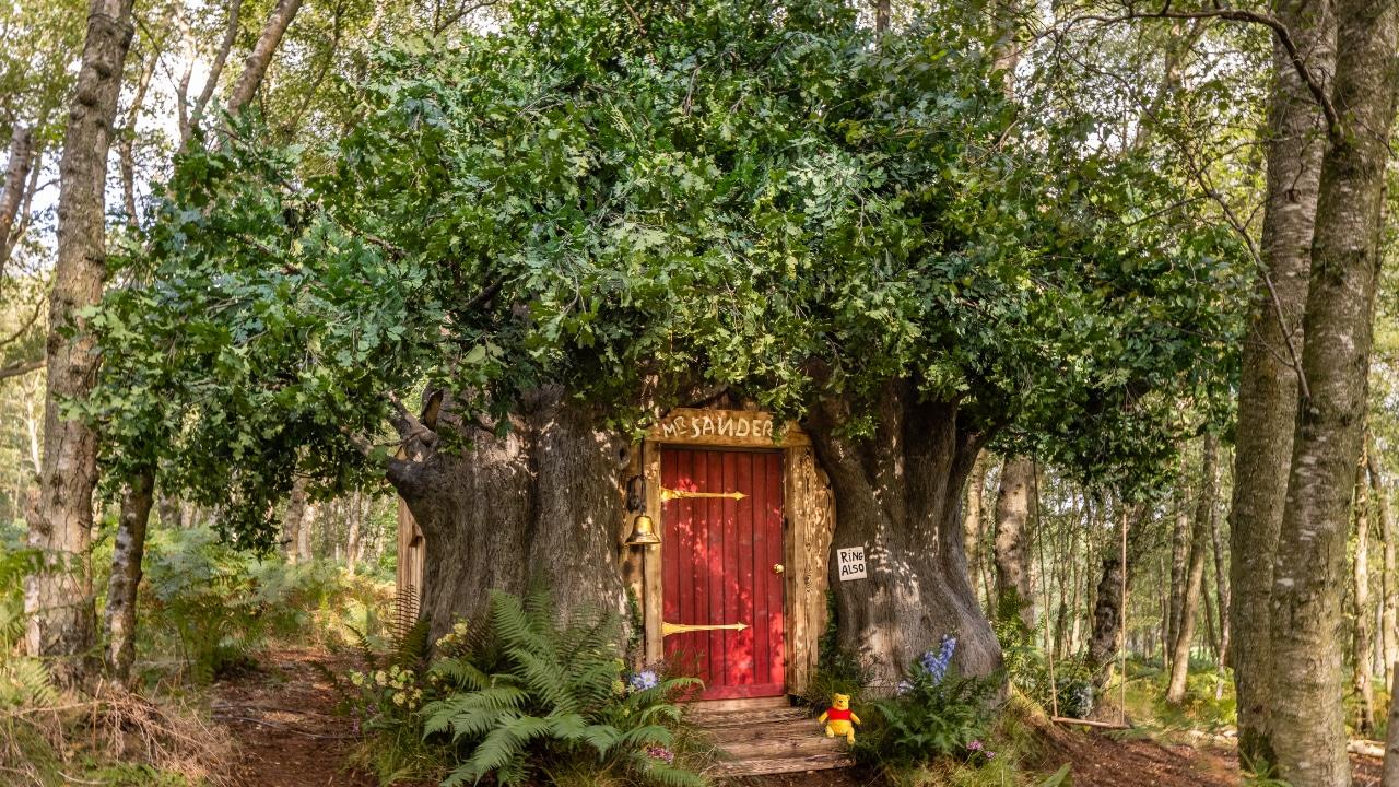 La casa ispirata a Winnie The Pooh arriva su Airbnb thumbnail